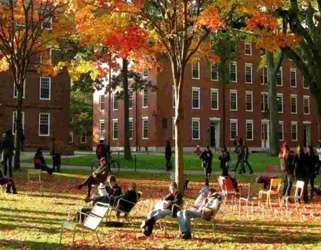 đại học harvard có những ngành nào