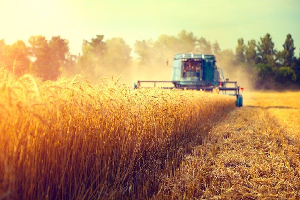 Khái quát về ngành nông nghiệp Úc