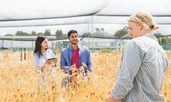 Những lý do nên du học ngành nông nghiệp tại Úc
