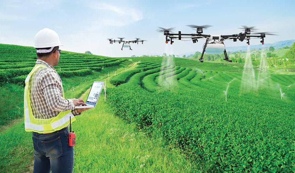Tại sao nên du học ngành nông nghiệp tại Úc?