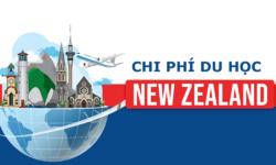 Thông tin về chi phí du học New Zealand mới nhất 2021
