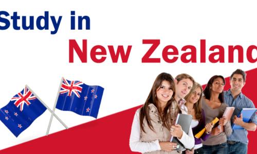 Liệu rằng bạn có nên đi du học New Zealand?