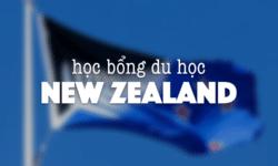 Tổng hợp học bổng du học New Zealand 2021